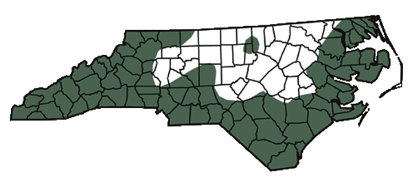 Rattlesnakes In North Carolina And Raleigh Critter Control Triangle - Map of rattlesnakes in us